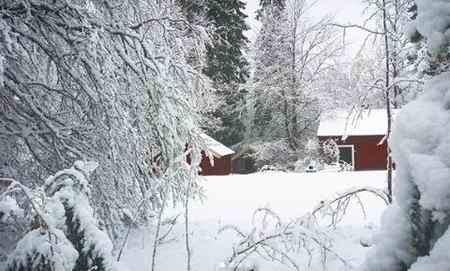متنی ادبی درباره یک صبح سرد و برفی زمستانی بنویسید (6)