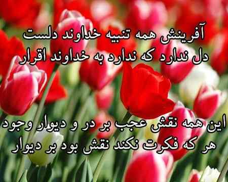 معنی شعر آفرینش همه تنبیه خداوند دل است