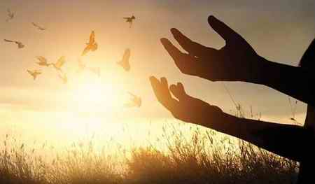 چه تفاوتی بین عبادت انسانها با دیگر موجودات است 1