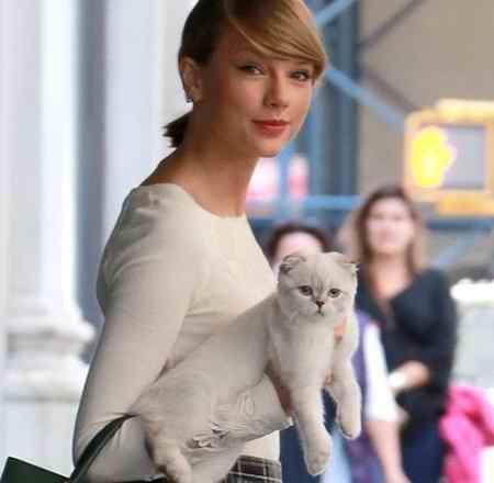 گربه خانگی تیلور سویفت 97 میلیون دلار می ارزد! (4)