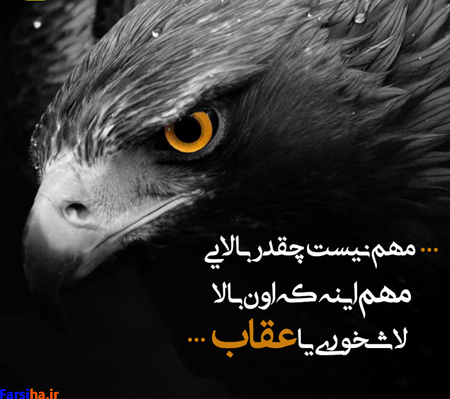 عکس نوشته کنایه دار برای پروفایل