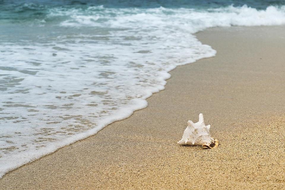 عکسهایی بکر از ساحل دریا