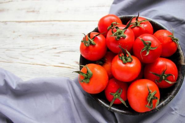 نگهداری گوجه فرنگی