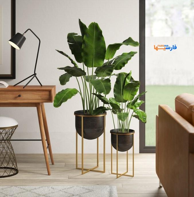 مدل گلدان زیبا و خاص برای منزل