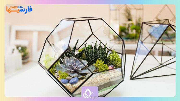 راهنمای زیباتر کردن خانه با گل و گیاه
