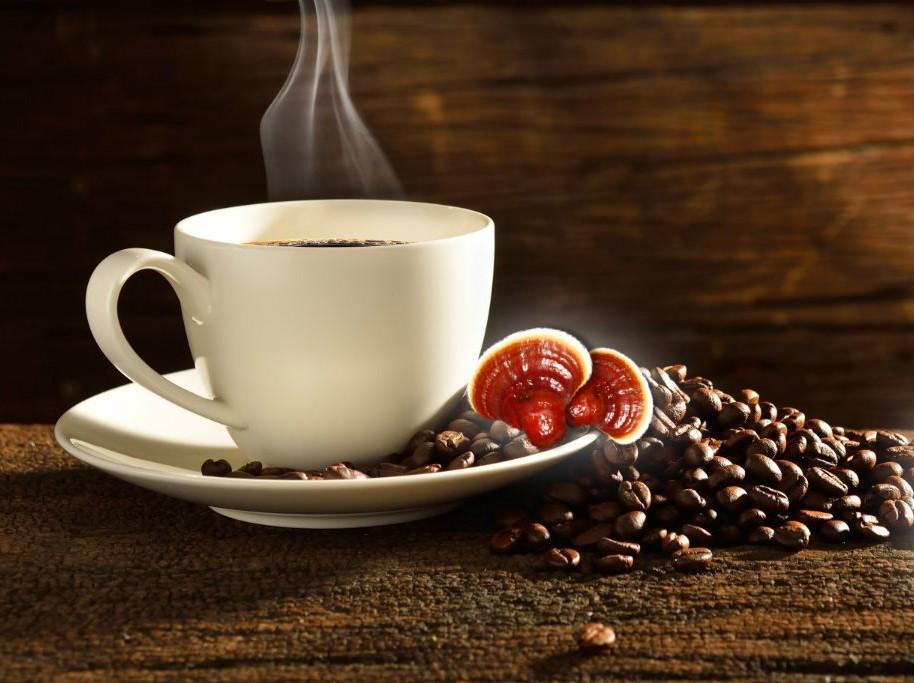 قهوه گانودرما چیست؟ آیا واقعا برای سلامتی مفید است؟