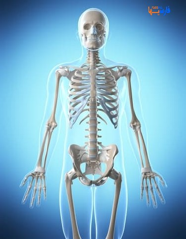 9 حرکت یوگا برای تقویت استخوان ها