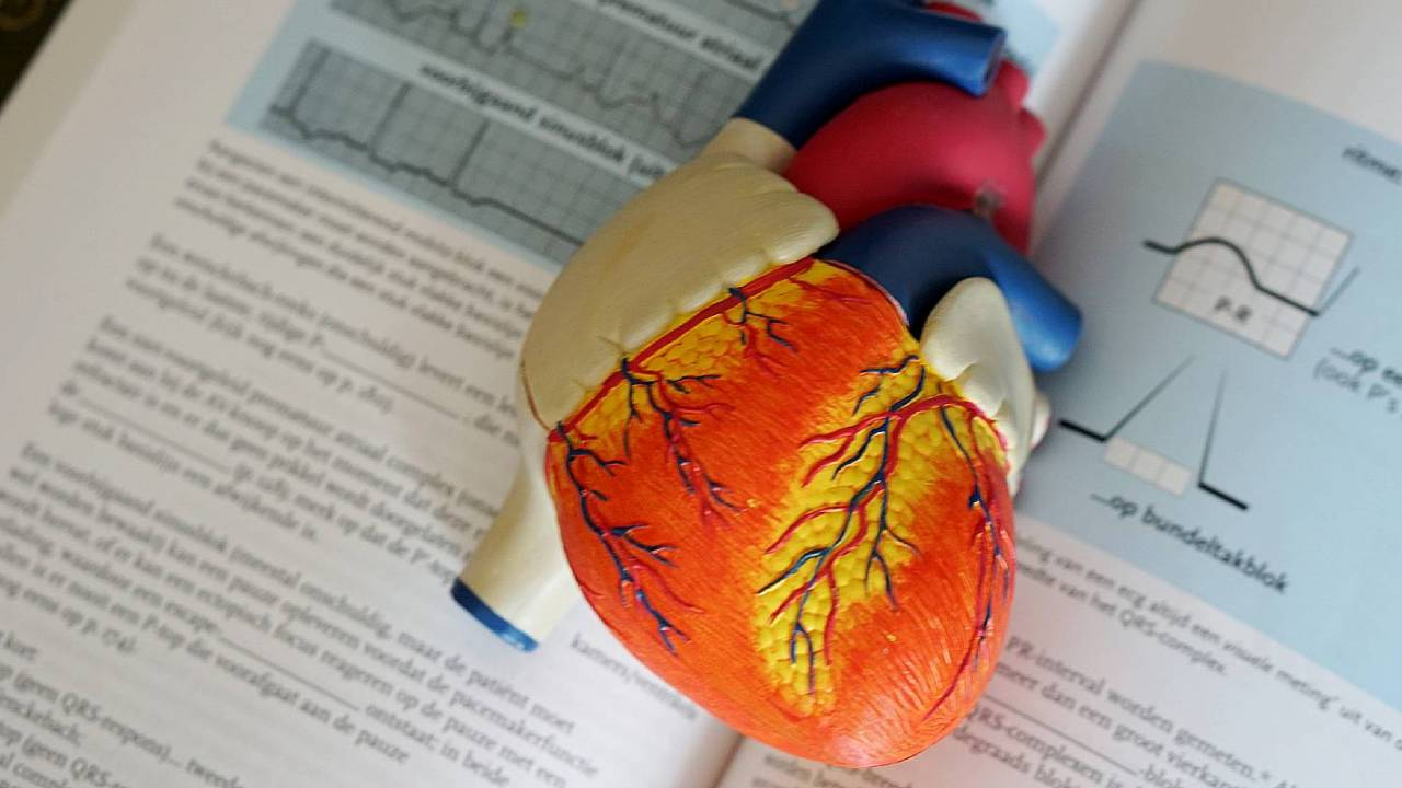 What is one possible cause of immediate death after a heart attack?