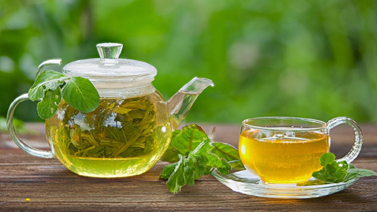 Green tea is the enemy of Corona