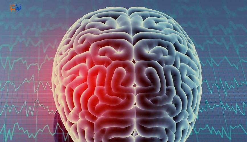 فواید ورزش بر روی مغز چیست؟