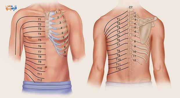 علت درد دنده چیست؟